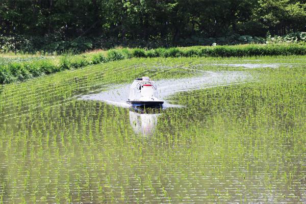 水稲除草剤散布(ボート)
