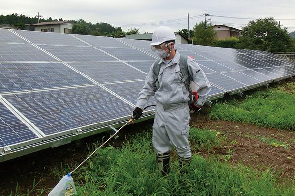 太陽光発電施設防除管理