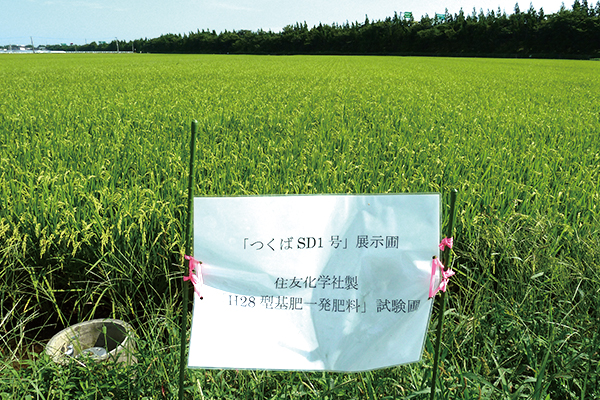 米の契約栽培